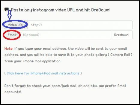 Download Instagram Videos Using Instagram video downloader by Dredown