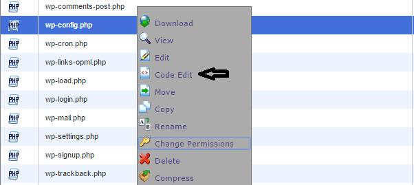 edit file cpanel
