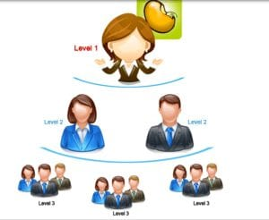 Levels of Referral
