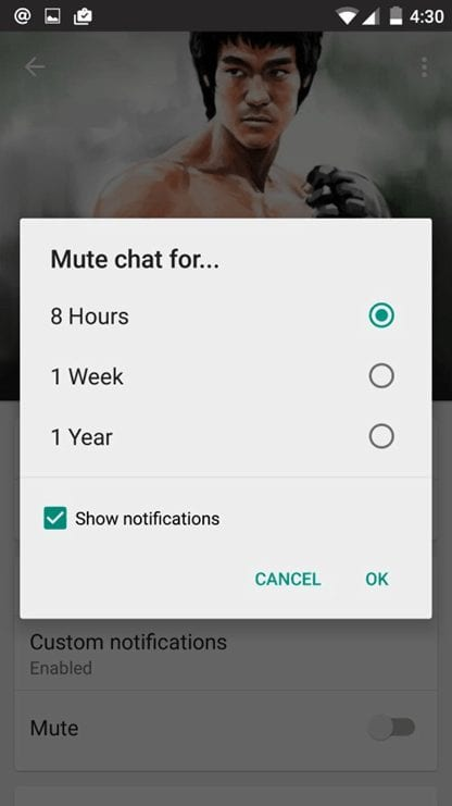WhatsApp-Mute Chat for Preset Period