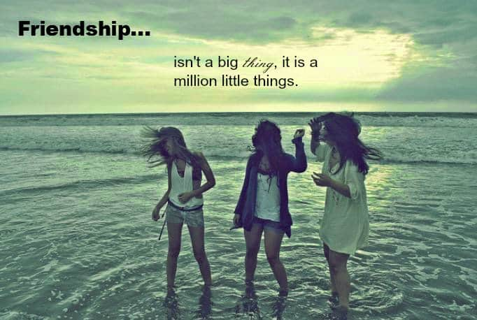friendship is not a big thing whatsapp dp