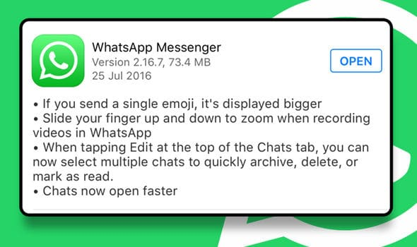 WhatsApp For iOS Update Brings Bigger Emoji, Ability To Delete Multiple Private Chats Simultaneously (2)