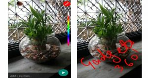 WhatsApp Rolls Out New Features Like 'Snapchat-Like Doodles And Selfie Flash'