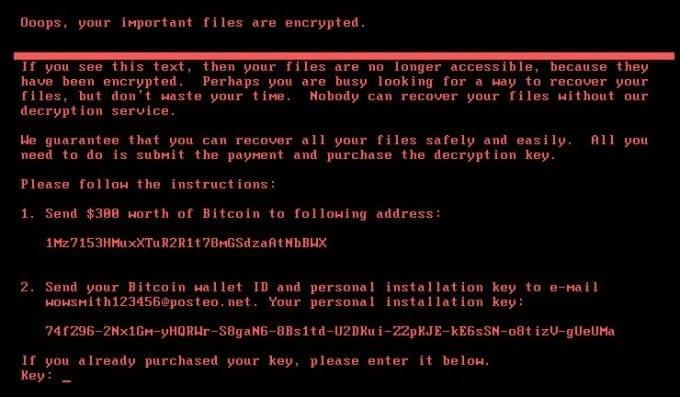 Petya Ransomware Cyberattack (4)