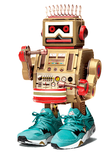 Sneakers-bot
