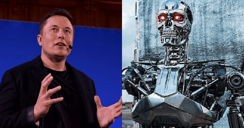 AI Is Highly Likely To Destroy Humans, There's Only A Small Chance For Humanity To Survive, Elon Musk Warns