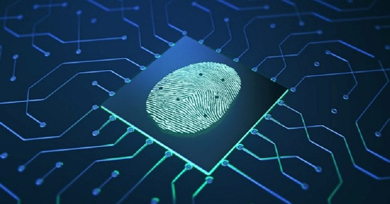 fingerprint-on-chip