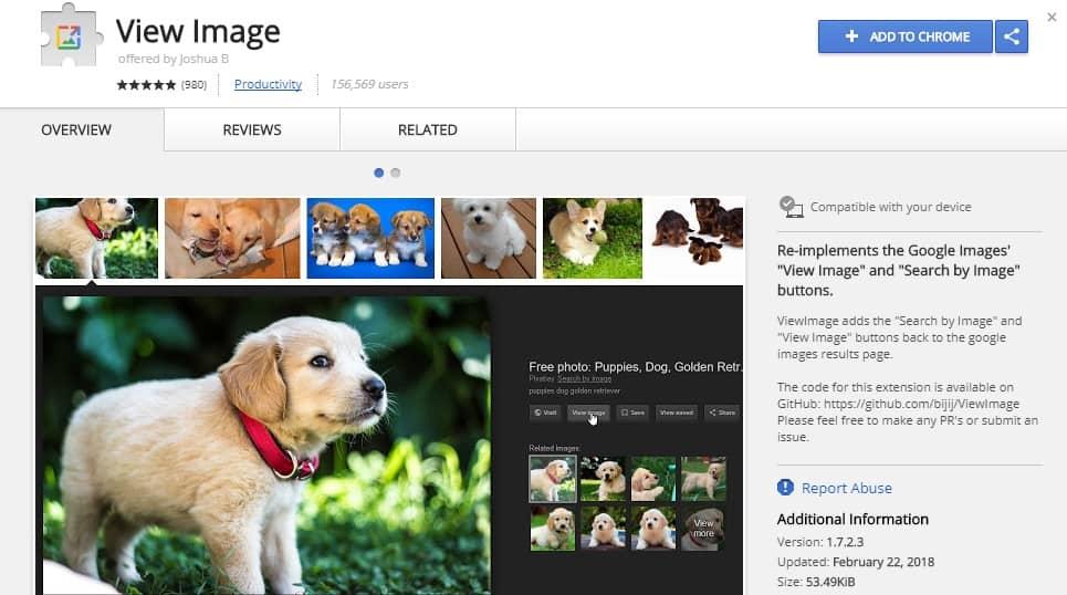 google-view-image