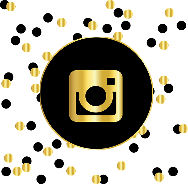 Tips To Become A Well Known Photographer On Instagram