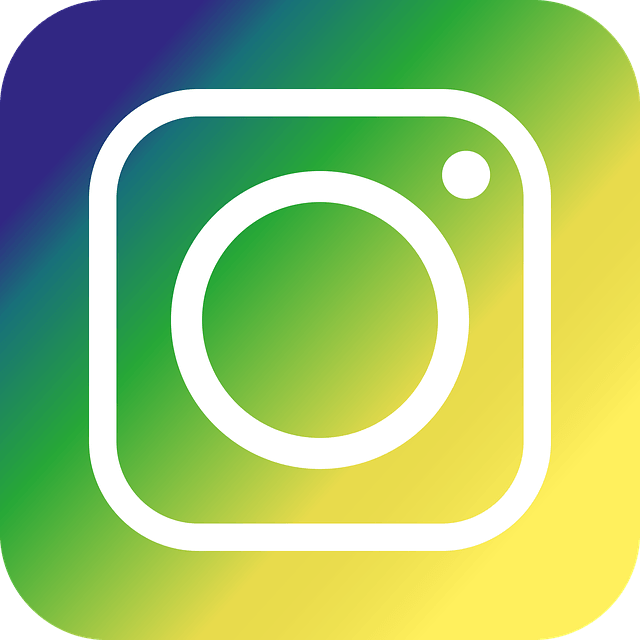 instagram, icon, green
