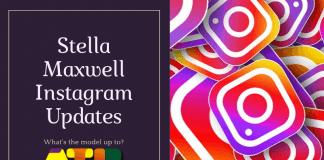 Stella Maxwell Instagram