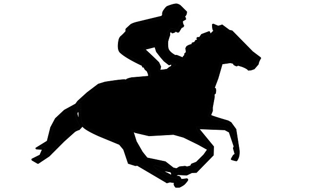 horse, racing, risk