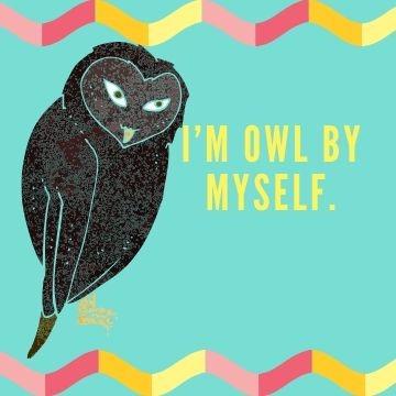 Funny Profile Picture - Owl