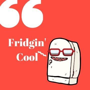 Profile Picture - Fridgin cool