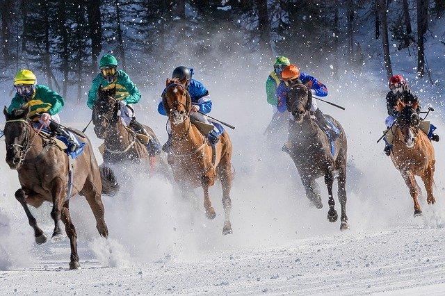 horse racing, gallop, jockey