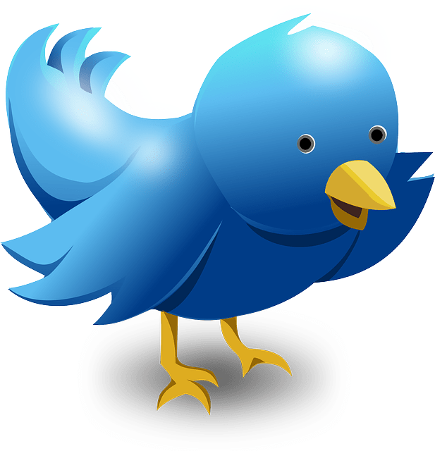 Tips For Buying The Followers On Twitter